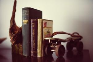 book-shelf-349947_960_720