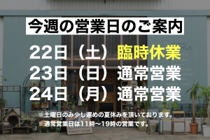 44BFE60E-67C6-44A1-B540-3BBA0D3331DB